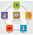 Five human senses smell sight hearing taste vector image