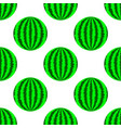 fresh ripe green watermelon vector image