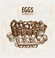 digital detailed line art eggs vector image