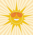 sun laughing vector image