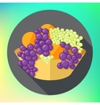 fruits tureen oranges grapes flat vector image