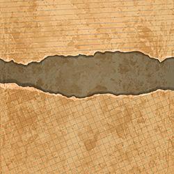 old torn paper set vector
