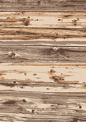 old wood texture background vector